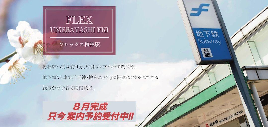サキドリ!New分譲地情報~FLEX梅林駅2号地の間取り紹介~