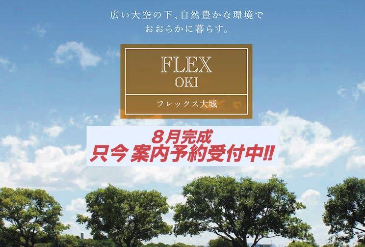 サキドリ!New分譲地情報~FLEX大城3号地の魅力を営業兒玉が語る~