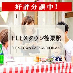 FLEXタウン篠栗駅